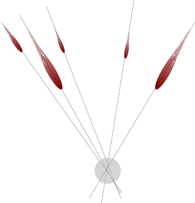 Image of intersecting of blood spatter impact angles.